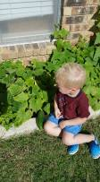 Kidz field Child Care Plano (14)